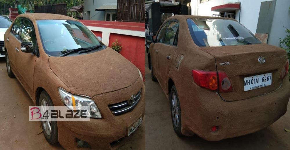 Cow Dung in car