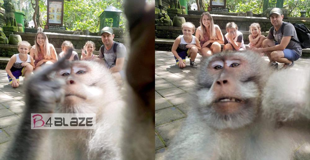 Monkey-middle-finger-selfie-bali-1