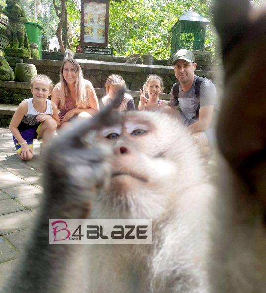 Monkey-middle-finger-selfie-bali