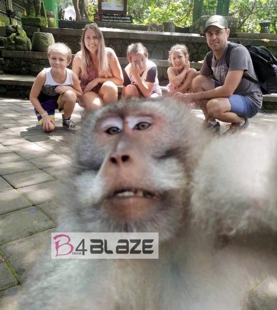 Monkey-middle-finger-selfie