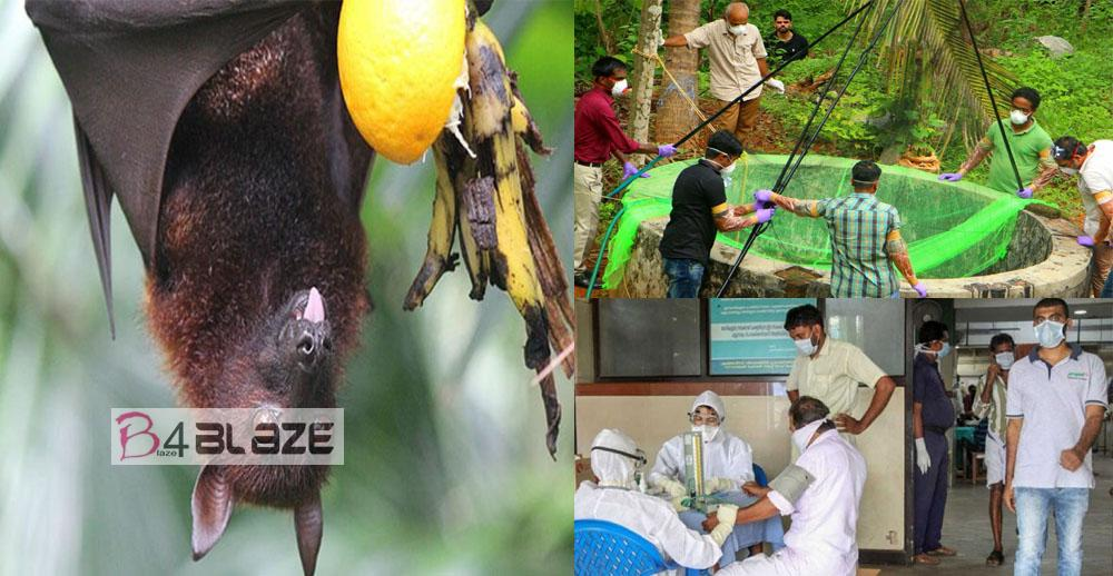 Nipah virus rescue steps