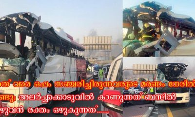 Nithin Balaji explained her experience when escape from dubai bus accident