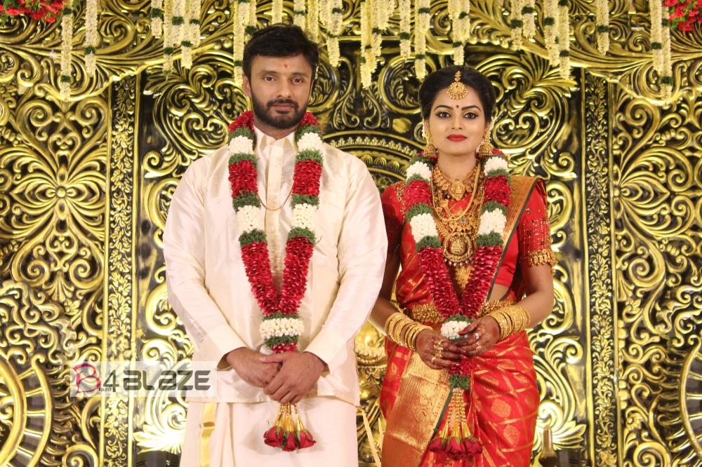Vishnu Priya wedding hd photos (2)