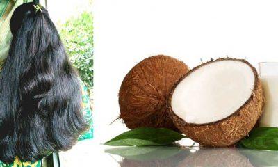 coconut milk for hair treatment
