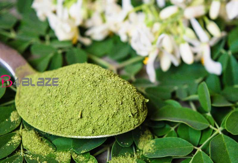 moringa-leaf-rate-increasin