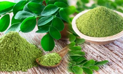 moringa-leaf-rate-increasin