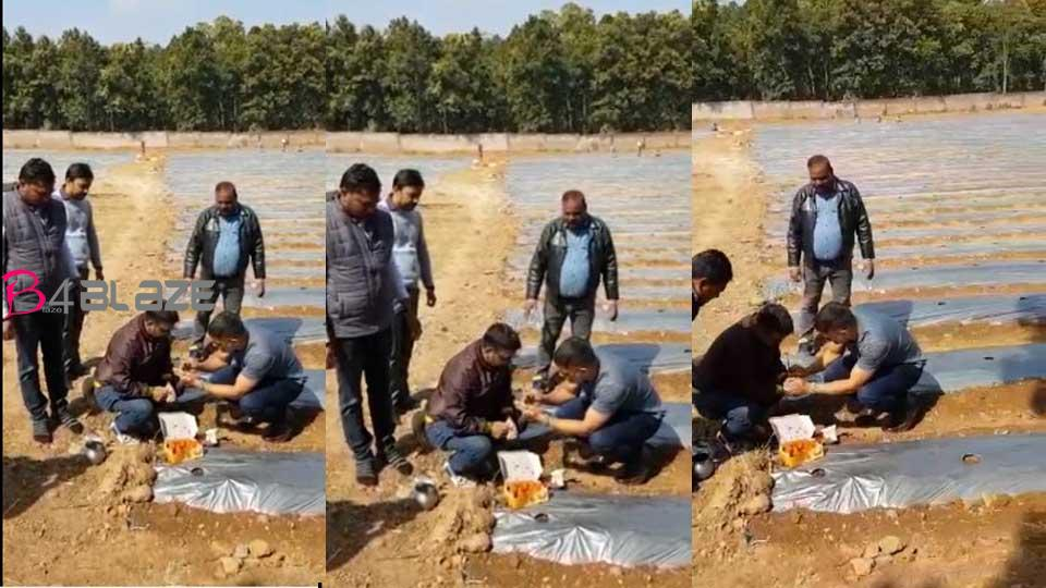 dhoni-in-farming